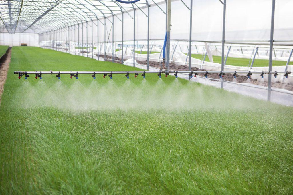 horticultural use for chlorine dioxide